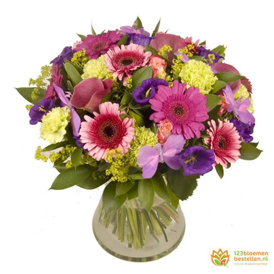 Boeket lila-paars