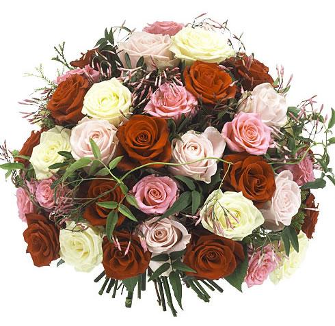 Warm mixed rozen