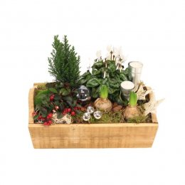 Kerst wintertuin (32cm)