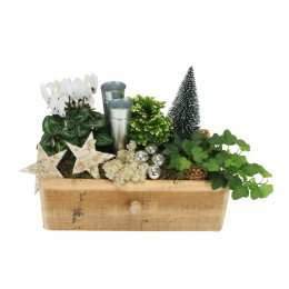 Wintertuin tray