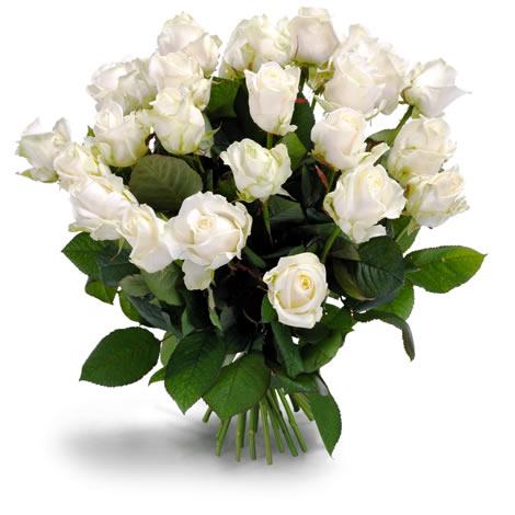 Witte rozen boeket